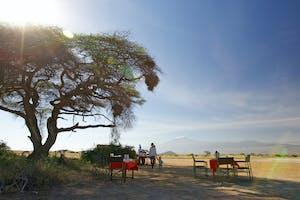 Tortilis  Camp Bush Breakfast With Views Of  Mt  Kilimanjaro