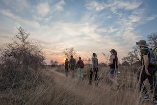 Trail Walking In South Africa