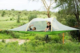 Tree Tent Fly Camping At El Karama