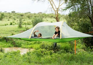 Tree Tent Fly Camping At El Karama
