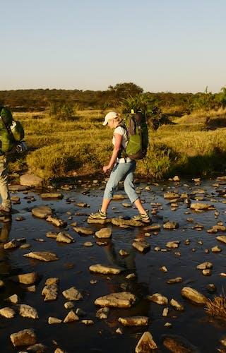 Trekking Safari In The Serengeti With Wayo