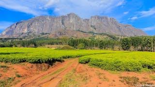 View Of Mount Mulanje In Malawi