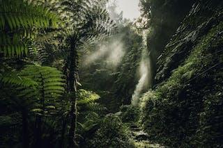 Visit Rwanda Nh Oo Activities Waterfall Trek 0147 Master 1920X1280
