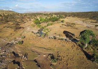 Wayo Walking Safaris In Tanzania