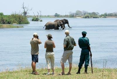 Walking Safari In Majete Reserve