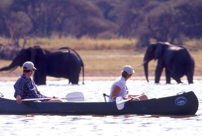 Canoeing In Lake Manyara