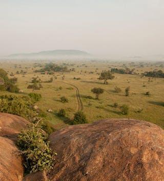 Wayo  Serengeti  Walking  Safari