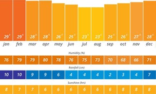 Weather In Mauritius