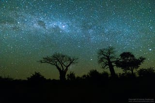 Wilderness Photography Course Makuleke Night Sky