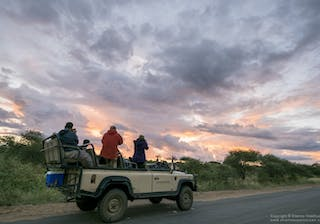 Wilderness Photography Course Makuleke At Dusk
