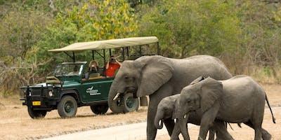 Wildlife Safari Liwonde Dana Allen Central African Wilderness Safaris 1200 X 797