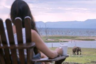 Wildlife Viewing From The Camp Changa Safari Camp