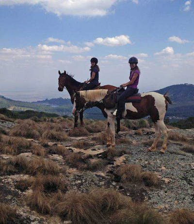 Zomba Forest Lodge Horse Riding On The Plateau