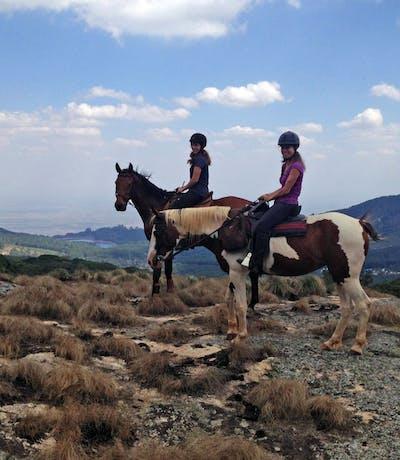 Zomba Forest Lodge Plateau Horseriding
