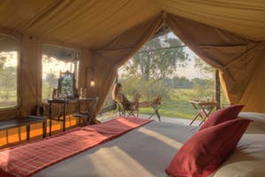 Elephant Pepper Camp Safari Tent