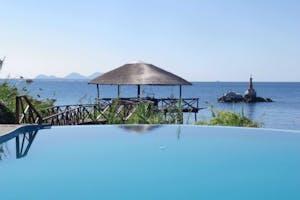Blue  Zebra  Island Swimming Pool