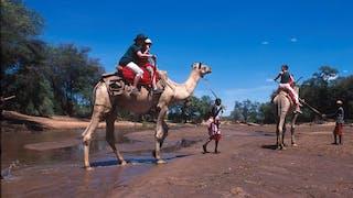 Camel Safari Kenya