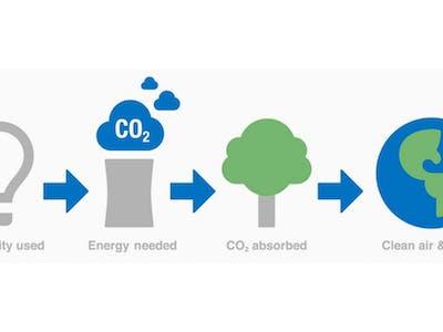 Carbon Offset 3