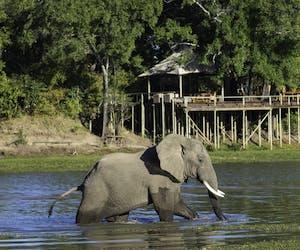 Chindeni Bush Camp River