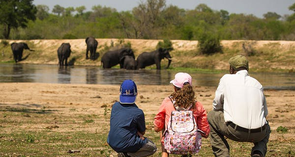 Chitwa Chitwa Family Safari