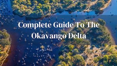 Complete Guide Okavango Delta
