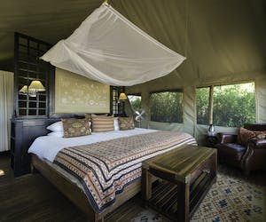 Desert Rhino Camp Bedroom