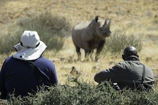 Desert  Rhino  Camp Guided Walk