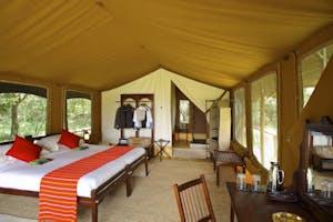 Elephant  Pepper  Camp  Luxury  Safari  Tents 6