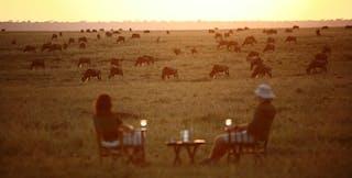 Elephant Pepper Camp Sundowners