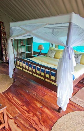 Gombe Forest Safari Room