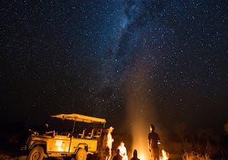 Gomoti Plains Night Drive