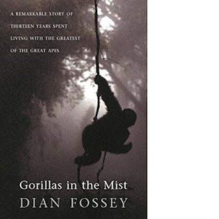 Gorillas In The Miist