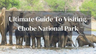 Guide To Chobe Botswana