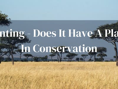 Hunting And Conservation