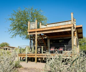 Kalahari Plains Camp Guests Tents And Rooftop Deck