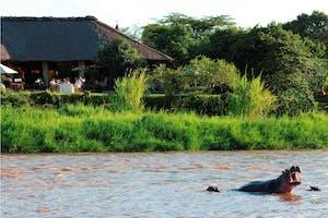 Karen  Blixen  Camp  Tent Hippos