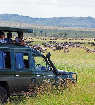 Kearsleys Tanzania Safari