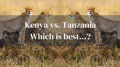 Kenya Vs Tanz