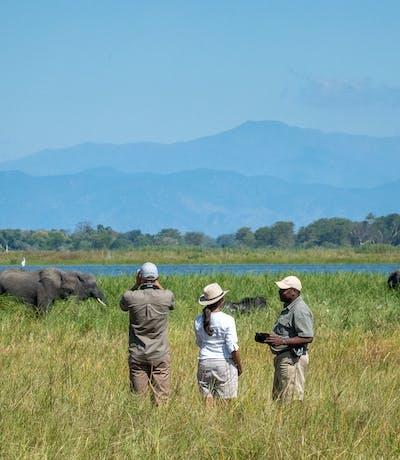 Kuthengo  Walking  Safari