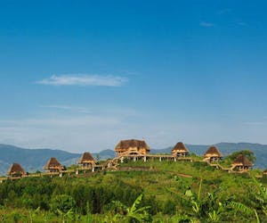 Kyaninga Lodge Hillside