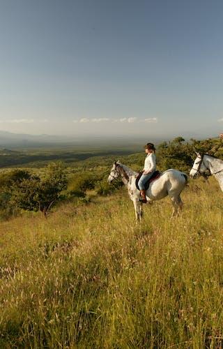 Lewa  Wilderness  Riding Wild