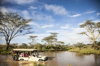 Segera Lodge Safari
