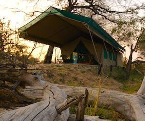 Manze Camp Tent
