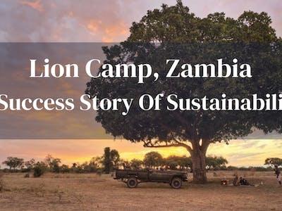 Lion Camp Sustainability Success