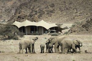 Hoanib Exterior And Elephants