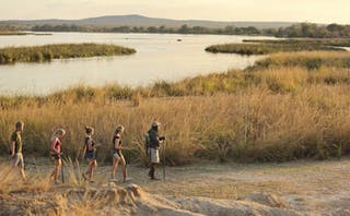 Azura Selous Walking Safari With Guide