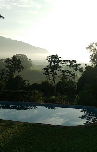 Lujeri Tea Estate Lodge Swimming Pool
