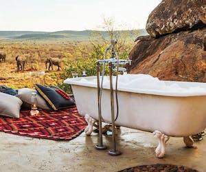 Madikwe Hills Bath Elephant