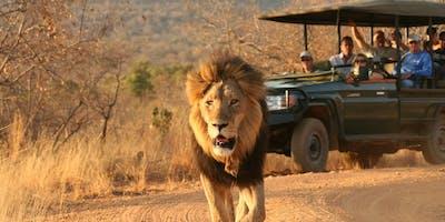 Makweti Black Mane Lion
