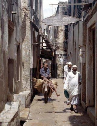 Man Rides Donkey Narrow Streets Lamu Town 1644099